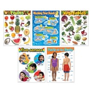 Trend Enterprises® Healthy Living Learning Charts Combo Pack, Grade PreK - 2nd