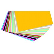 """Pacon® Card Stock Scrapbook Pages, 12"""" x 12"""", 160/Pack, Assorted"""