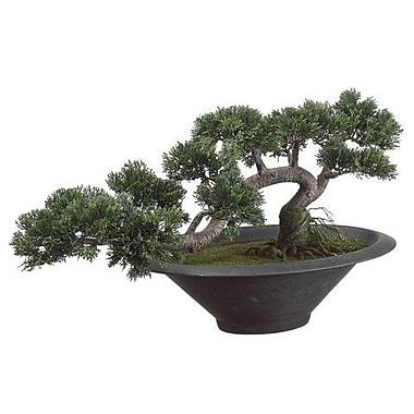Tori Home Trailing Cedar Artificial Bonsai Desk Top Plant in Pot
