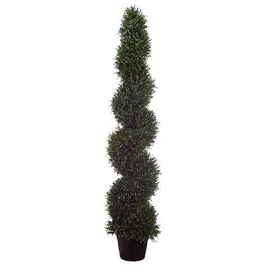 Tori Home Rosemary Spiral Plant Round Topiary in Pot