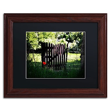Trademark Philippe Sainte-Laudy Black Matte With Wood Frame