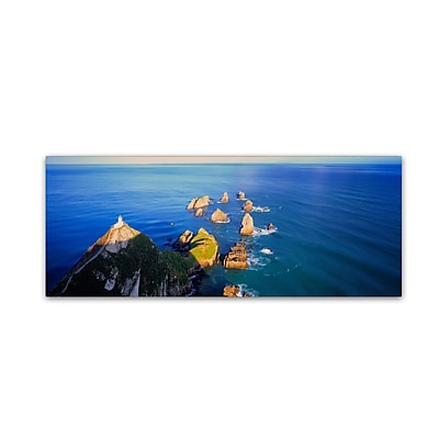 "Trademark David Evans ""Nugget Point-NZ"" Gallery-Wrapped Canvas Art, 16"" x 47"""