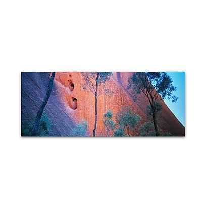 "Trademark David Evans ""Uluru Up Close"" Gallery-Wrapped Canvas Art, 16"" x 47"""