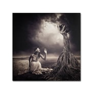 "Trademark Erik Brede ""Is There Anybody Out There"" Gallery-Wrapped Canvas Art, 24"" x 24"""