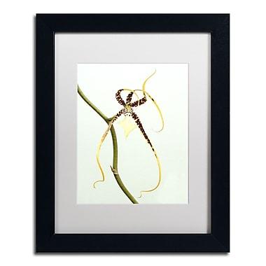 Trademark Kurt Shaffer White Matte With Black Frame