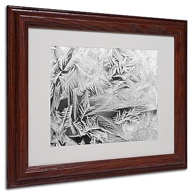 Trademark Kurt Shaffer White Matte With Wood Frame