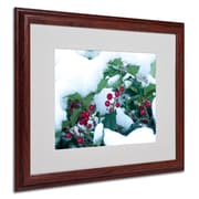 "Trademark Kurt Shaffer ""Holly in the Snow"" Art, White Matte With Wood Frame, 16"" x 20"""