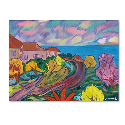 "Trademark Manor Shadian ""Winding Path by Ocean"" Gallery-Wrapped Canvas Art, 24"" x 32"""