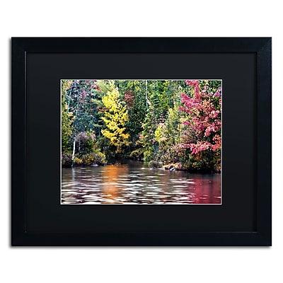 """Trademark David Ayash """"Adirondacks"""" Art, Black Matte With Black Frame, 16"""" x 20"""""""