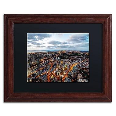 Trademark David Ayash Black Matte With Wood Frame