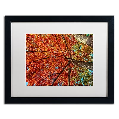 "Trademark David Ayash ""New York Fall-II"" Art, White Matte With Black Frame, 16"" x 20"""