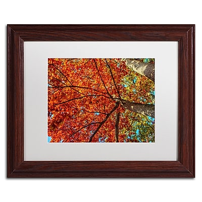 "Trademark David Ayash ""New York Fall-II"" Art, White Matte With Wood Frame, 11"" x 14"""