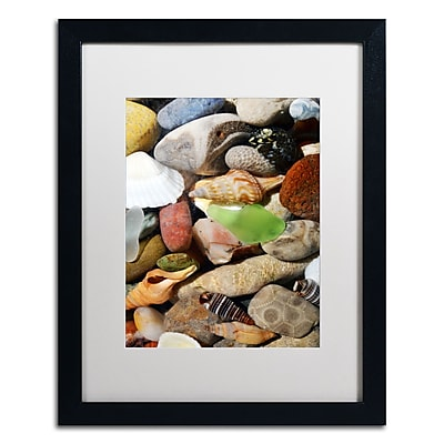 "Trademark Michelle Calkins ""Petoskey Stones l"" Art, White Matte With Black Frame, 16"" x 20"""