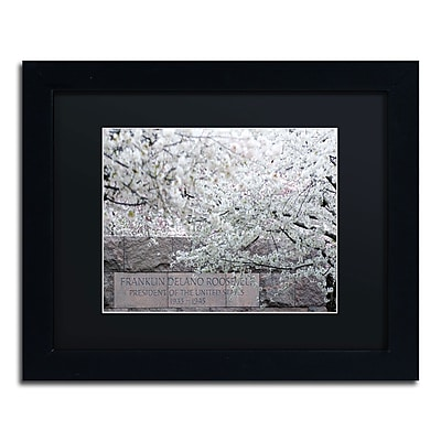 "Trademark CATeyes ""Cherry Blossoms 2014-4"" Art, Black Matte W/Black Frame, 11"" x 14"""