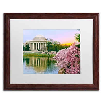 "Trademark CATeyes ""Cherry Blossoms 2014-6"" Art, White Matte W/Wood Frame, 16"" x 20"""