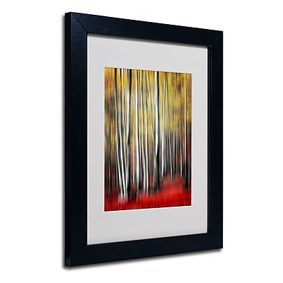 "Trademark Philippe Sainte-Laudy ""Osmosis"" Art, White Matte With Black Frame, 11"" x 14"""