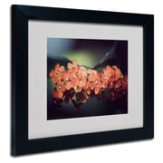 "Trademark Philippe Sainte-Laudy ""Flowers Waiting"" Art, White Matte With Black Frame, 11"" x 14"""