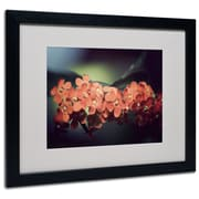 "Trademark Philippe Sainte-Laudy ""Flowers Waiting"" Art, White Matte With Black Frame, 16"" x 20"""
