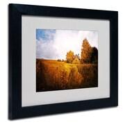 "Trademark Philippe Sainte-Laudy ""Light in Vineyards"" Art, White Matte With Black Frame, 11"" x 14"""