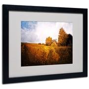 "Trademark Philippe Sainte-Laudy ""Light in Vineyards"" Art, White Matte With Black Frame, 16"" x 20"""