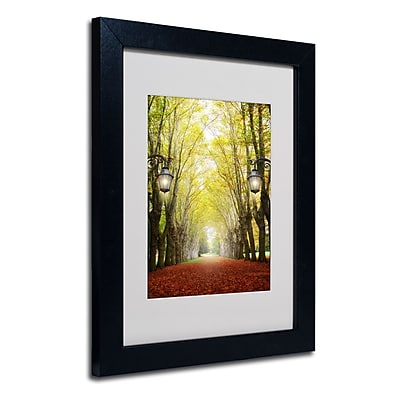 "Trademark Philippe Sainte-Laudy ""Plane Tree Alley"" Art, White Matte With Black Frame, 11"" x 14"""
