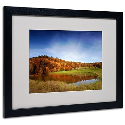 "Trademark Philippe Sainte-Laudy ""Vosges Fall"" Art, White Matte With Black Frame, 16"" x 20"""