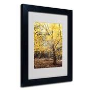 "Trademark Philippe Sainte-Laudy ""Yellow Fall"" Art, White Matte With Black Frame, 11"" x 14"""