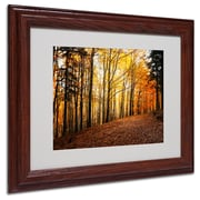 """Trademark Philippe Sainte-Laudy """"Autumn Leaves"""" Art, White Matte With Wood Frame, 11"""" x 14"""""""