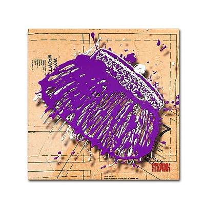 "Trademark Roderick Stevens ""Snap Purse Purple"" Gallery-Wrapped Canvas Art, 35"" x 35"""