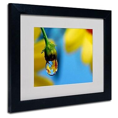 Trademark Steve Wall White Matte W/Black Frame