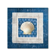 "Trademark Belinda Aldrich ""Sea Shell III on Blue"" Gallery-Wrapped Canvas Arts"