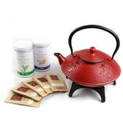 Tao Tea Leaf – Ensemble-cadeau théière en fonte, 0,8 l