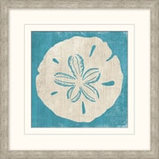 "Sanddollar 2 Framed Art, 18"" x 18"""