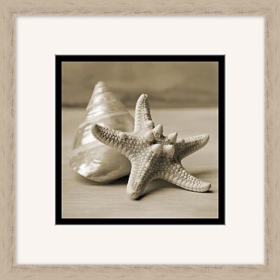 Layered Shells 1 Framed Art, 18