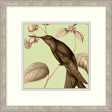 Spring Birds 2 Framed Art, 18