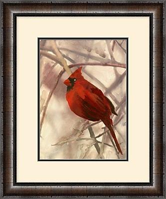 Cardinal 2 Framed Art, 20