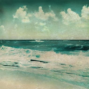 The Salty Sea 1 Canvas Art, 24