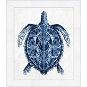 "Sea Turtle Framed Art, 25"" x 39"""