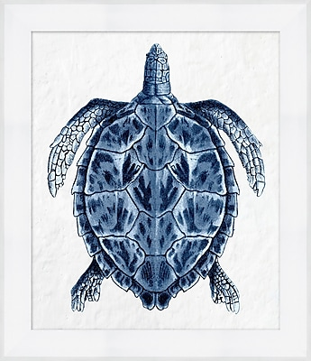 Sea Turtle 1 Framed Art, 25