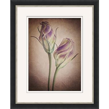 Vintage Flowers 1 Framed Art, 26