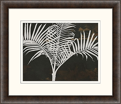 Palm 2 Framed Art, 28