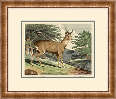 Deer Framed Art, 28