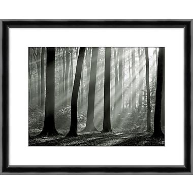 Shining Through 1 Framed Art, 31