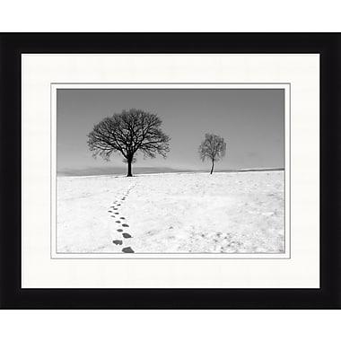 Winter Trees 2 Framed Art, 32