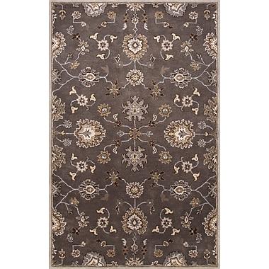 Jaipur Nantes Area Rug 100% Wool, 8' x 10'