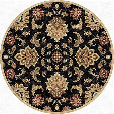 Jaipur Mythos Ebony Area Rug Wool 8' x 8'