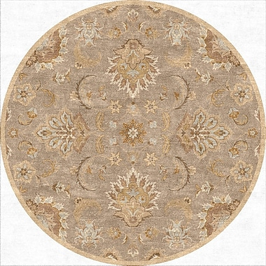 Jaipur Hand-Tufted Abers Area Rug Wool, 8' x 8'