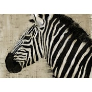 PTM Images Kariba Graphic Art on Wrapped Canvas