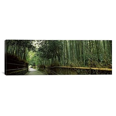 iCanvas Panoramic Arashiyama, Honshu, Japan Photographic Print on Canvas; 16'' H x 48'' W x 1.5'' D