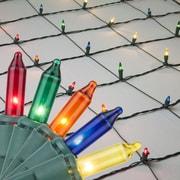 Kringle Traditions Mini Net Light; Multi